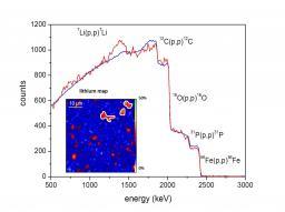 Dsm/Iramis/SIS2M/LEEL (Laboratory for Light Element Studies)